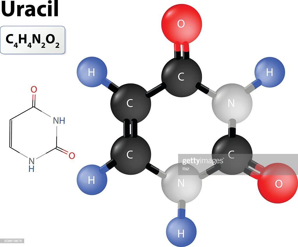 Uracile molecular structure : Vector Art