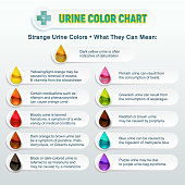 Urine Color Chart 2