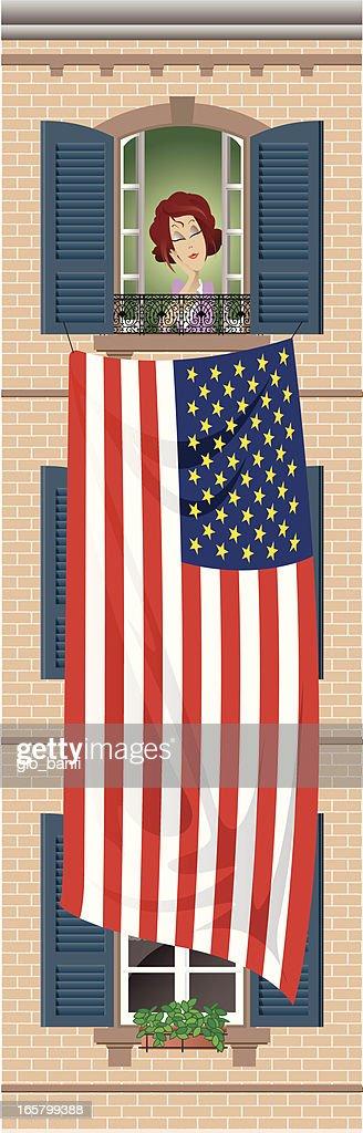 usa flag and window