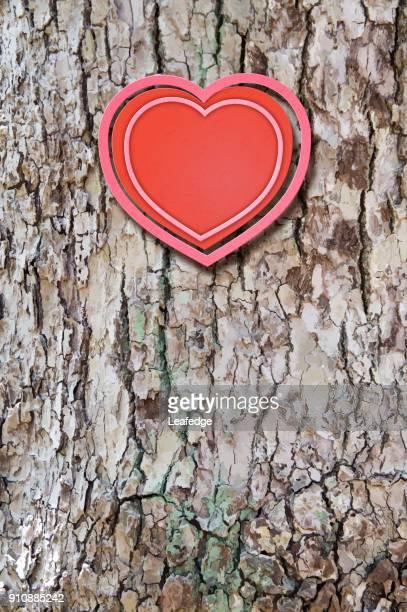 valentine's day background [heart on the bark] - tree bark stock illustrations, clip art, cartoons, & icons