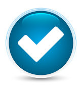 Validate icon special prime blue round button