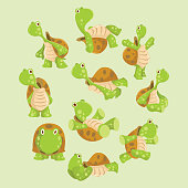 variation of cute and cheerful green turtle behavior, cartoon character