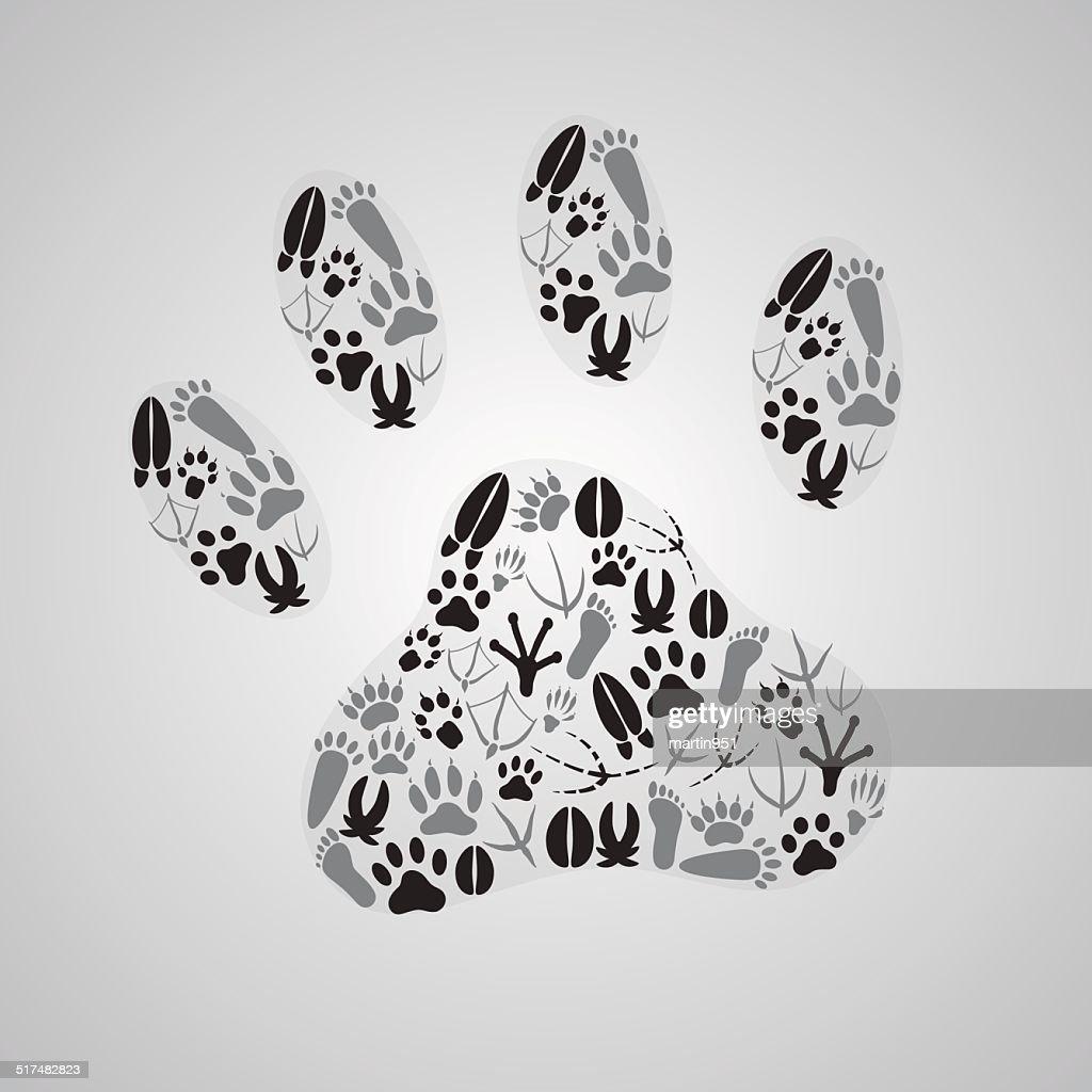 various animal footprints eps10