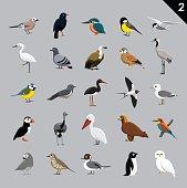 Various Birds Cartoon Vector Illustration 2