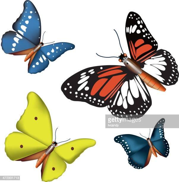 verschiedenen farben schmetterling - animal limb stock-grafiken, -clipart, -cartoons und -symbole