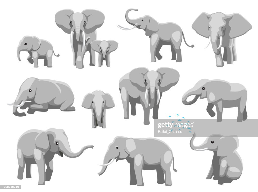 Various Elephant Poses Cartoon Vector Illustration