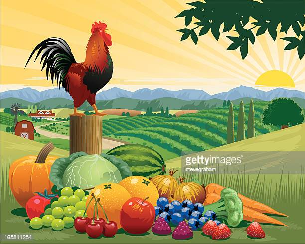 Various harvested fruits and vegetables with rooster on post