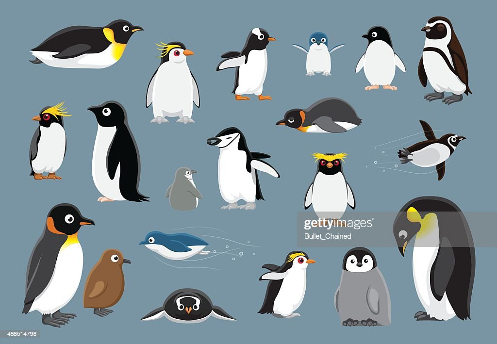 Various Penguins Cartoon Vector Illustration