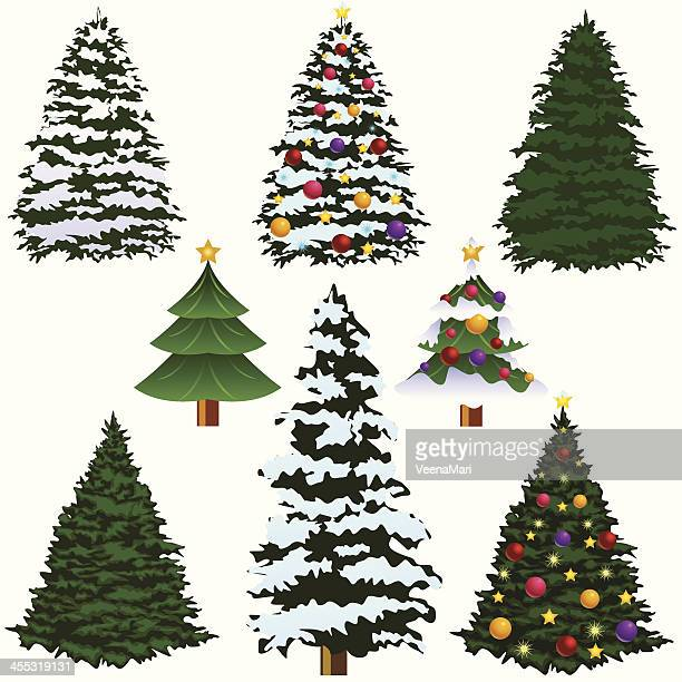Various types of Christmas trees isolated on white