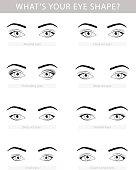 Various types of woman eyes, vector set
