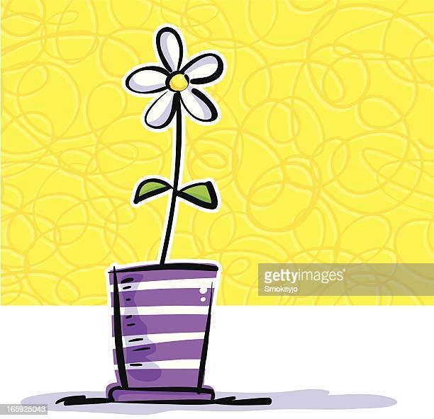 Vase Daisy