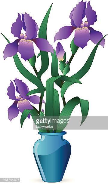 vase von irises