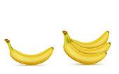 Vector 3d realistic yellow banana bunch