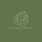 Vector abstract logo design template in trendy linear minimal style - monstera leaf