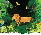vector african rainforest jungle with lion and different animals