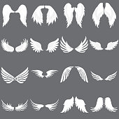 Vector Angel Wing logo set. Winged logo company. Set of Cute Angel Wing. Wing flying.
