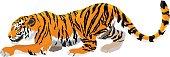 vector angry tiger mascot illustration