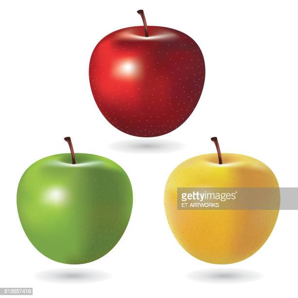 Vector Apples
