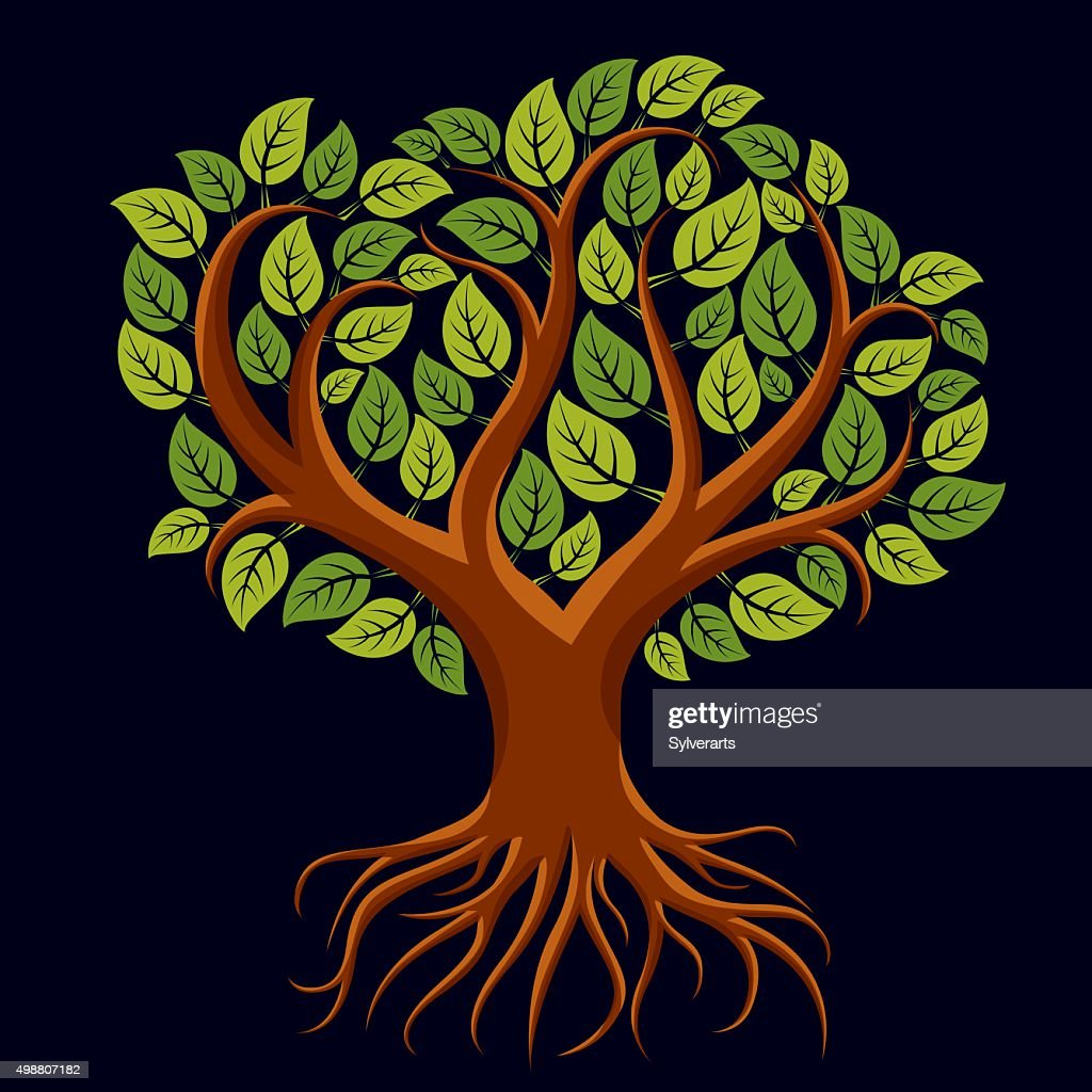 Vector art illustration of green tree with strong roots.