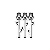 Vector Asparagus icon. Farm vegetables element. Premium quality graphic design. Signs, outline symbols collection, simple thin line icon for websides, web design, mobile app, infographics