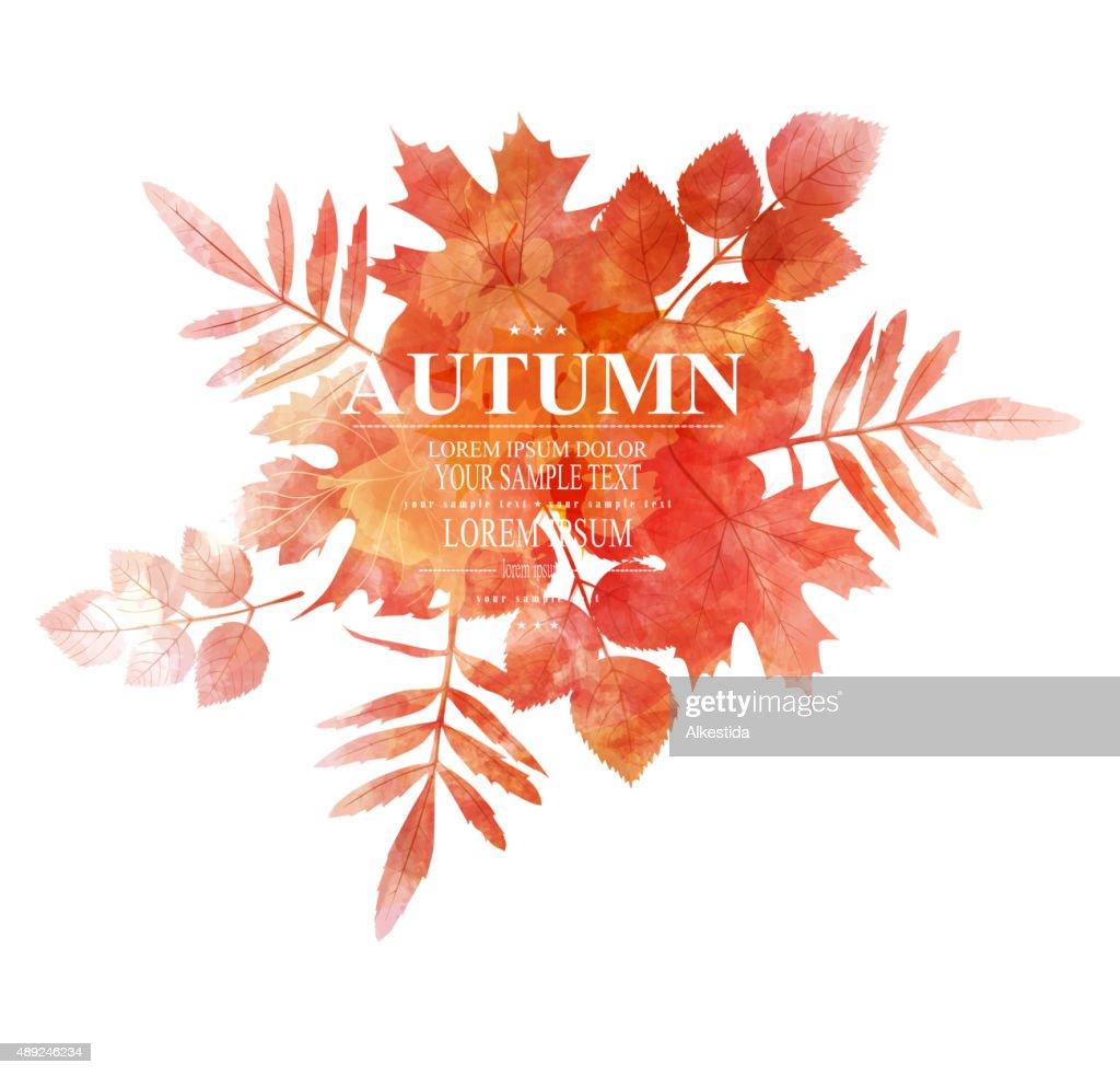 vector autumn, orange, leaves (imitation of watercolors)