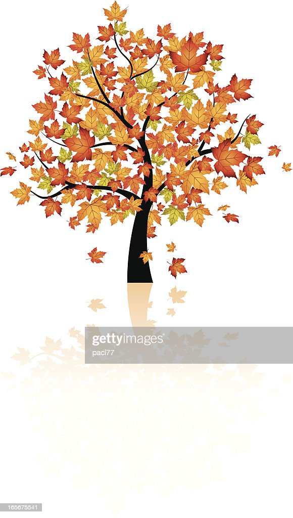 Vector autumn tree design