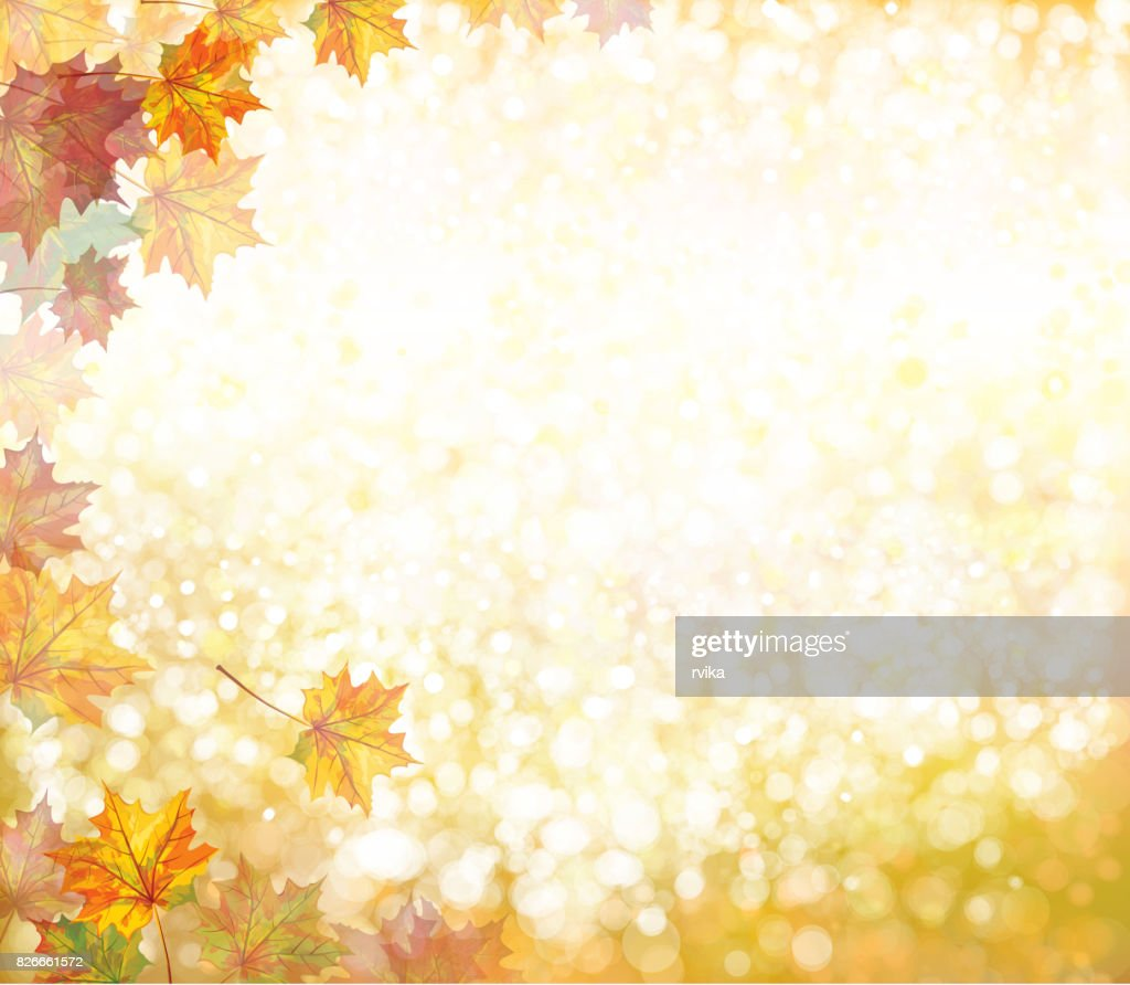 Vector autumnal background.