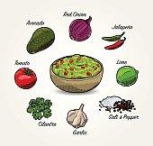 Vector Avocado Guacamole Ingredients