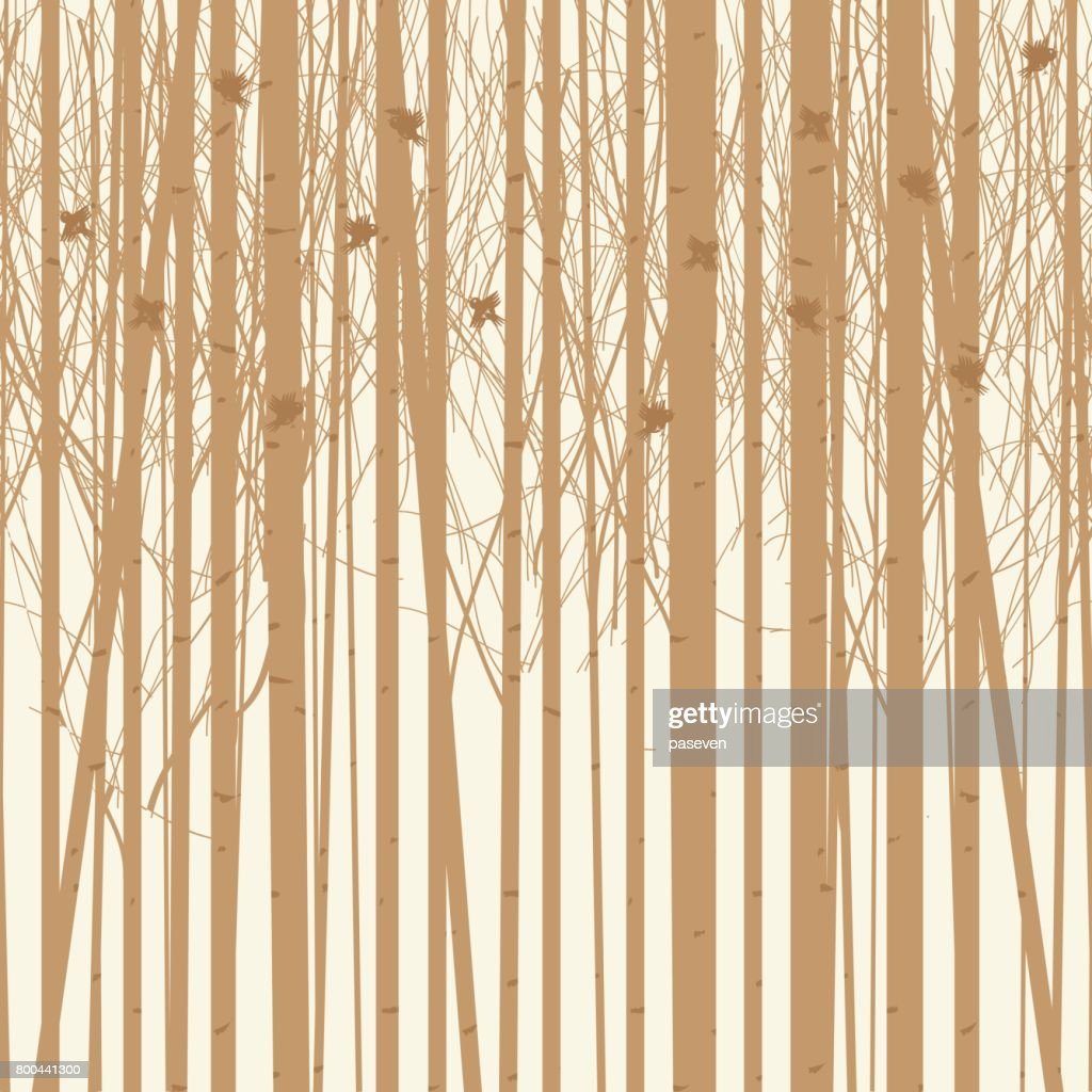 vector background birch trees with birds