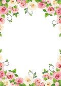 Vector background with pink and white roses.