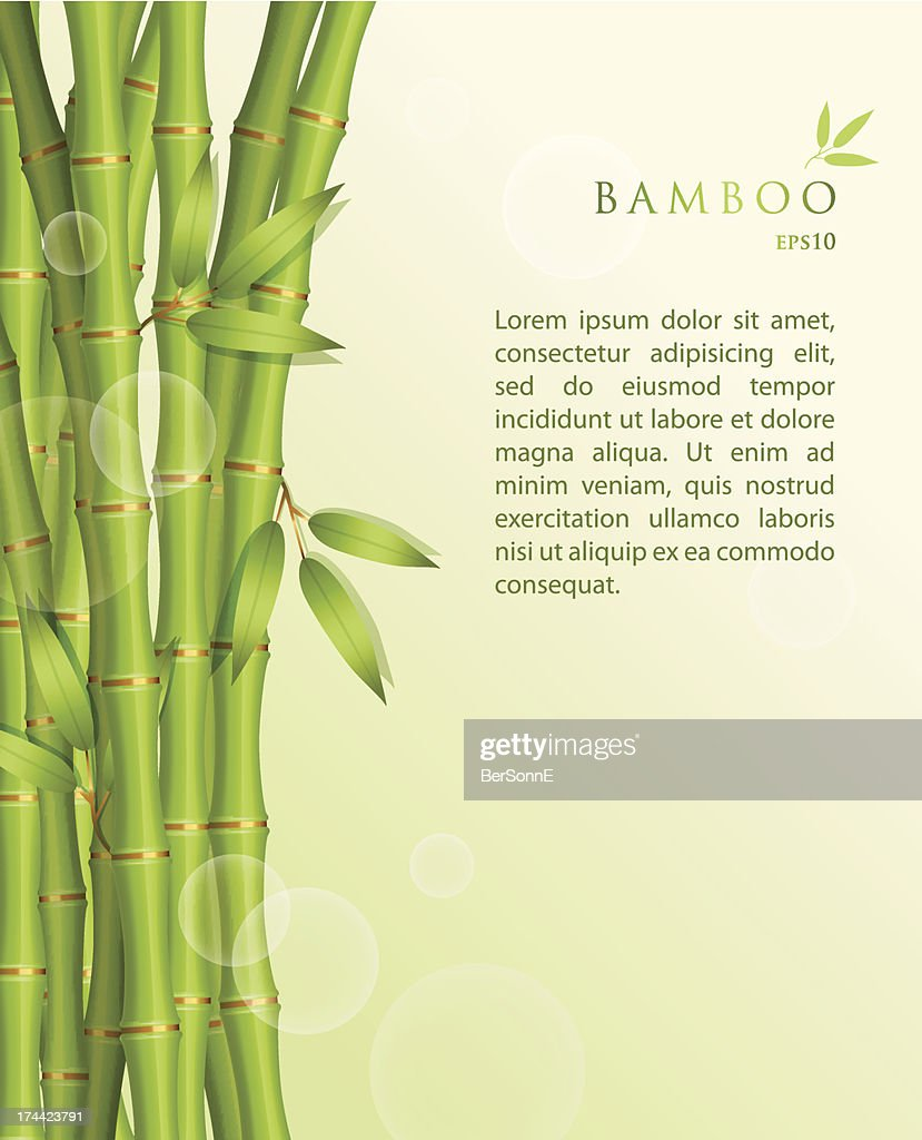 EPS10 vector background with shoots of green bamboo
