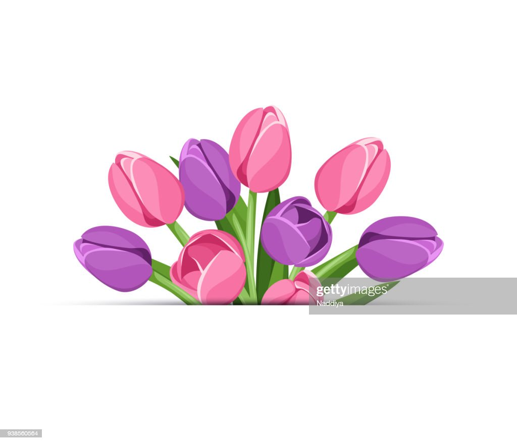 Vector background with tulip flowers.