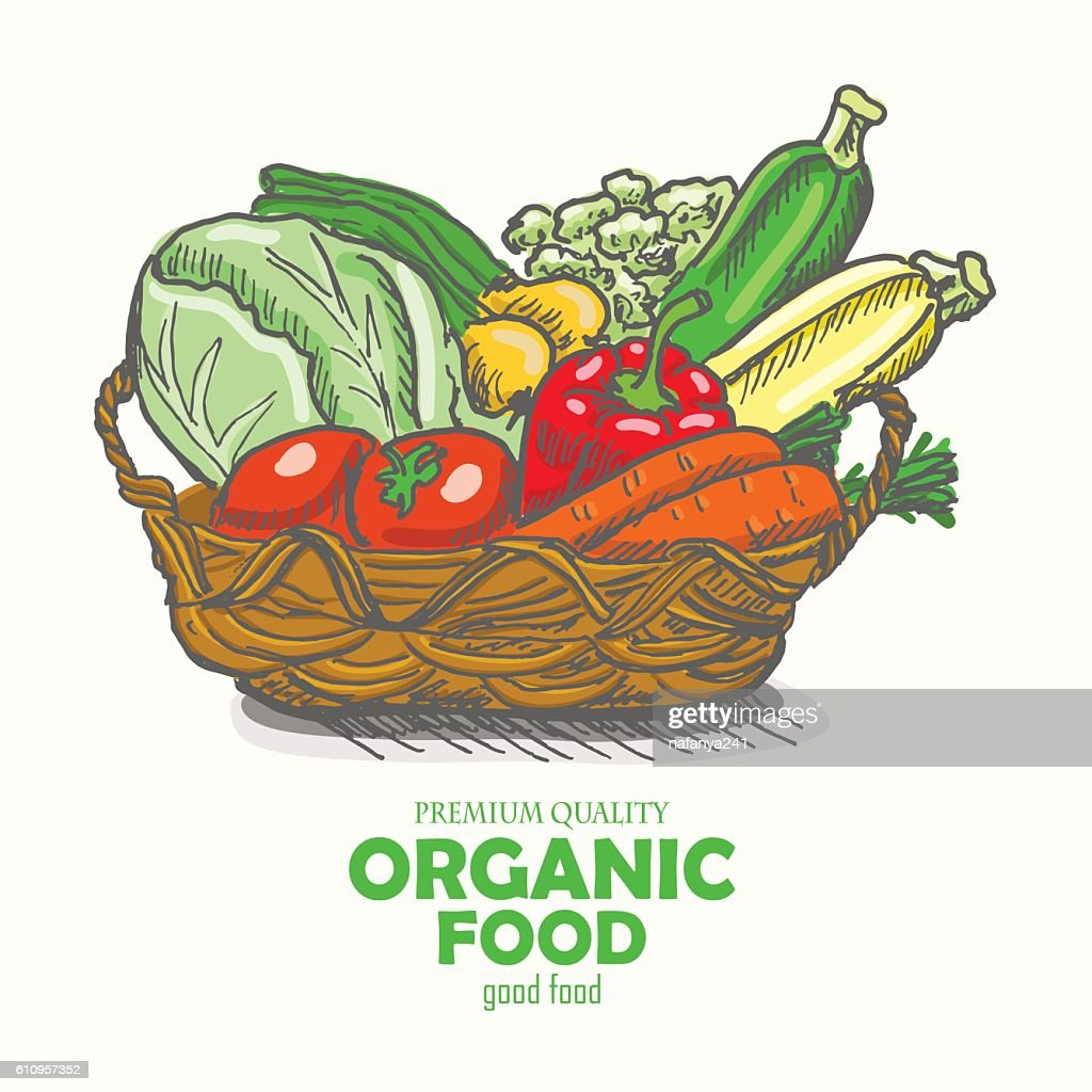 Vector background with vegetables in the basket.