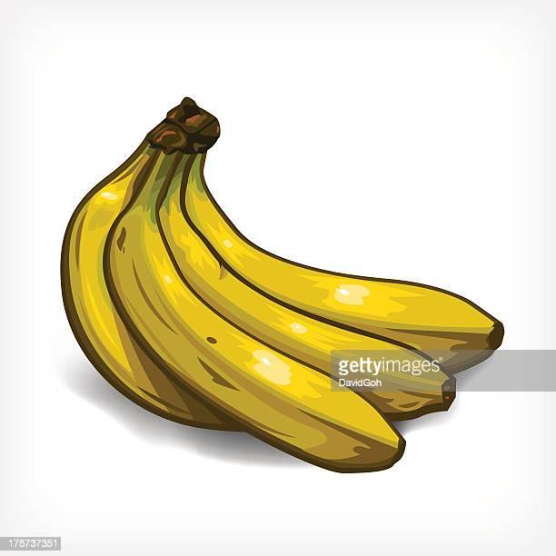 Vektor-Bananen