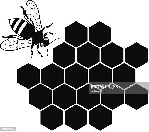vector bee and honey comb in black and white
