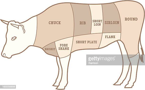 vector beef diagram - sirloin steak stock illustrations, clip art, cartoons, & icons