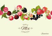 Vector berry seamless border.