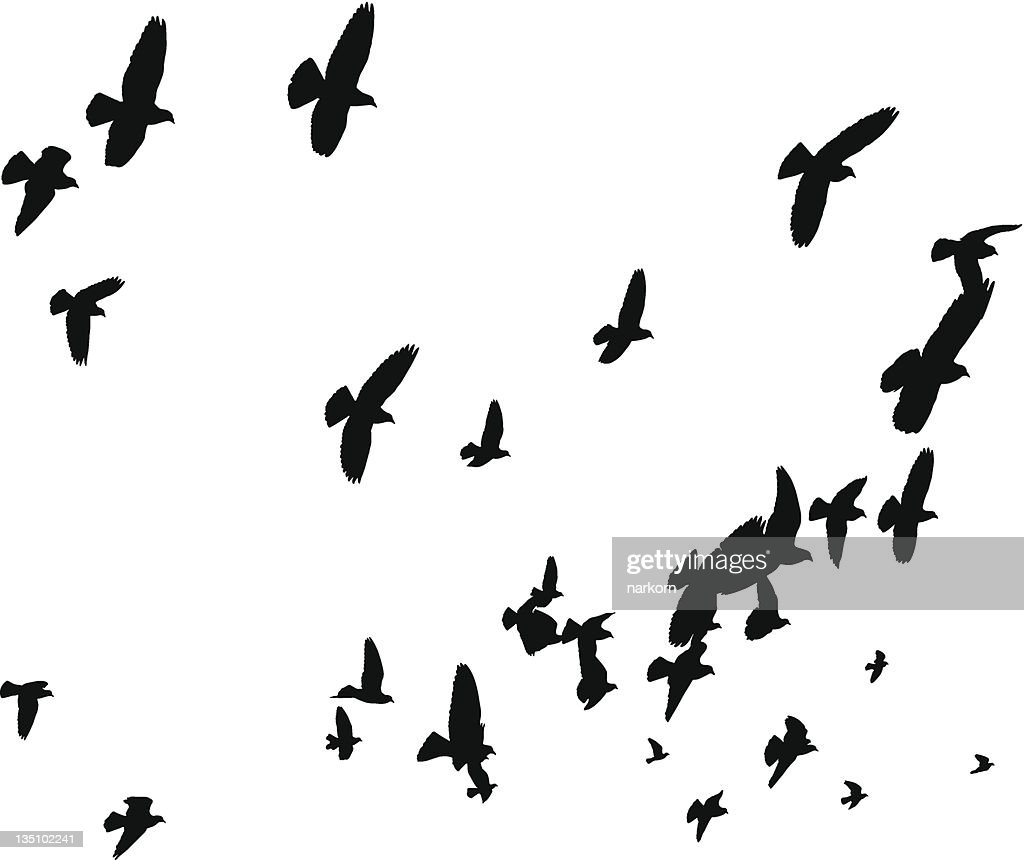 Vector Birds Flying Away - Peace to the World