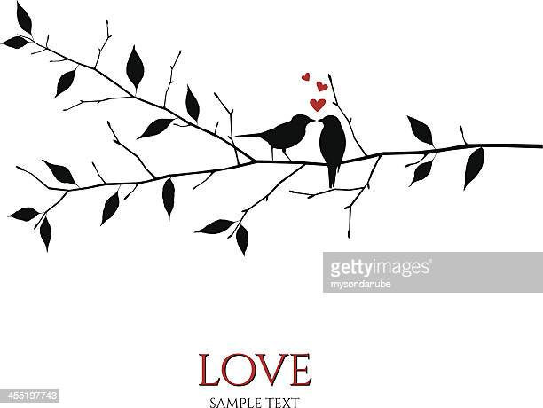 bildbanksillustrationer, clip art samt tecknat material och ikoner med vector birds on branch - love and romance concept - fågel