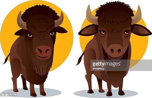 vector bison - european bison stock illustrations, clip art, cartoons, & icons