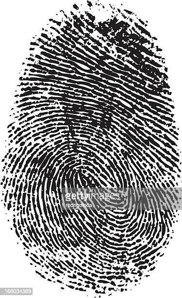 A vector black and white fingerprint