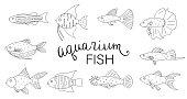 Vector black and white set of aquarium fish isolated on white background.