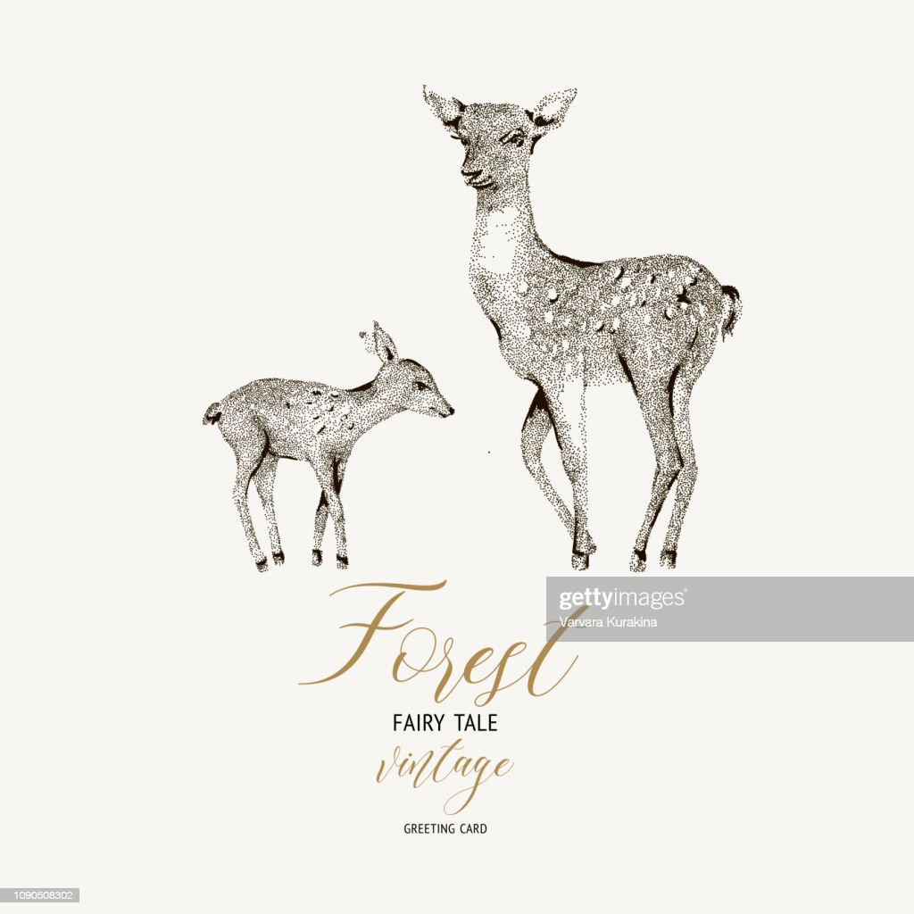 Vector black and white winter vintage card with cute deer