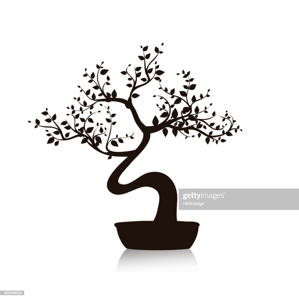 Vector black bonsai tree in a pot. Isolated illustration on white