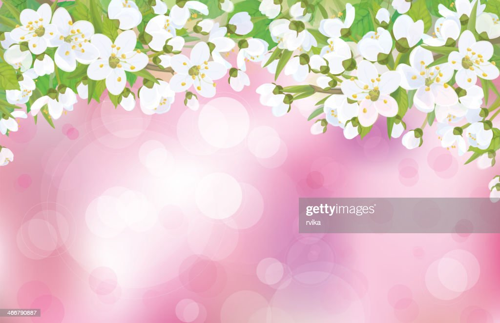 Vector blossoming tree on pink background.