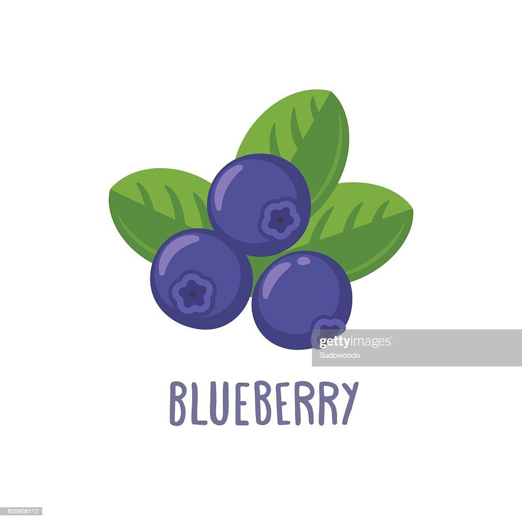 Vector blueberry icon