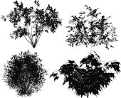 Vector bushes.