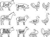 Vector Butchery Labels. Farm Animals Thin Line Icons Collection Is