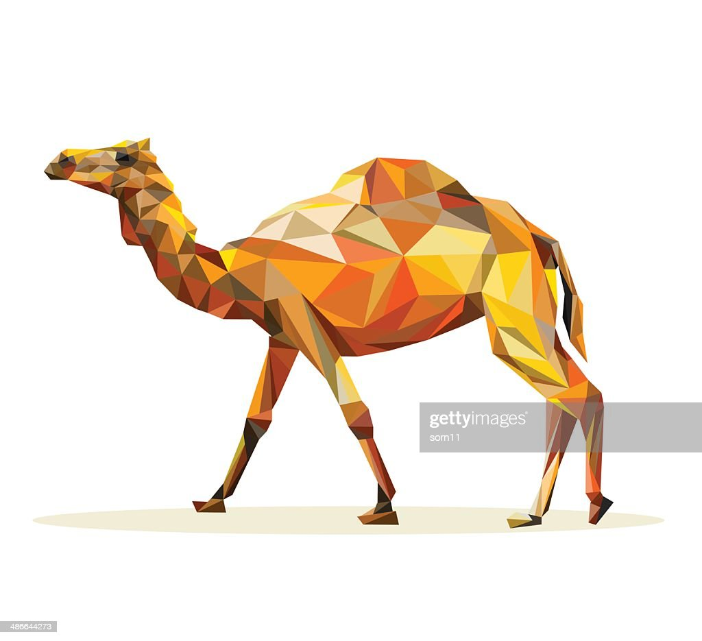 Vector - camel geometric