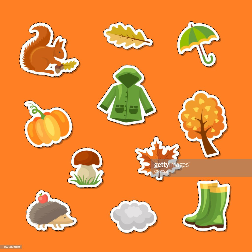 Vector cartoon autumn elements and leaves stickers set illustration